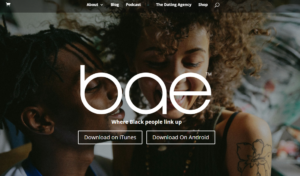 Visit Bae website